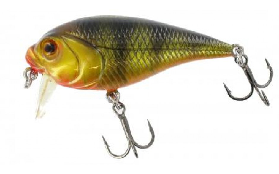 Jenzi Dragon Diver Bull Trout Wobbler