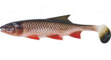 Clone Shad Döbel 12cm Angelköder Gummifisch zum Angeln auf Raubfische