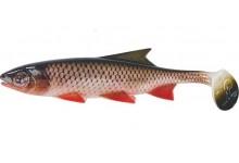 Clone Shad Döbel 18cm Angelköder Gummifisch zum Angeln auf Raubfische